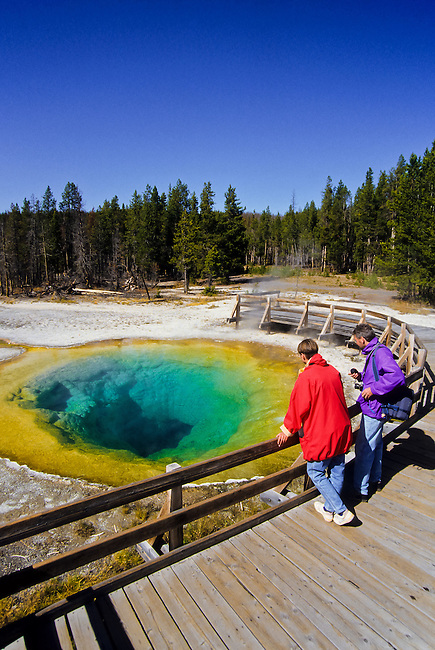 A couple watching the Morning Glory hot spring in Yellowstone national Park, Wyoming, USA