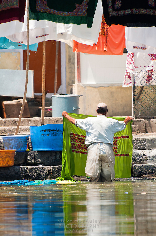 Kashmiri man washing laundry along the banks of Dal Lake, Srinagar, Kashmir, India.