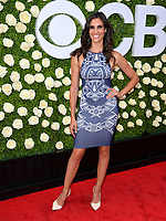 Daniela Ruah at CBS TV's Summer Soiree at CBS TV Studios, Studio City, CA, USA 01 Aug. 2017<br /> Picture: Paul Smith/Featureflash/SilverHub 0208 004 5359 sales@silverhubmedia.com