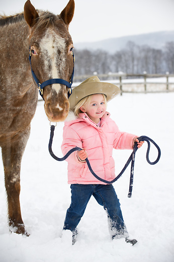 Little blonde girl leading big Appaloosa horse through a snowy pasture, happy and cute three year old preschooler wearing pink winter coat and cowby hat walking with animal, a farm field in Pennsylvania, PA, USA.