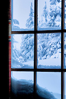 View out window at Timberline Lodge, Oregon
