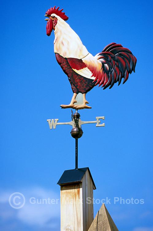 Weather Vane Vanes Weathervane Weathervanes Rooster