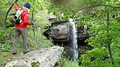 Outdoor: Sweden Creek Natural Area