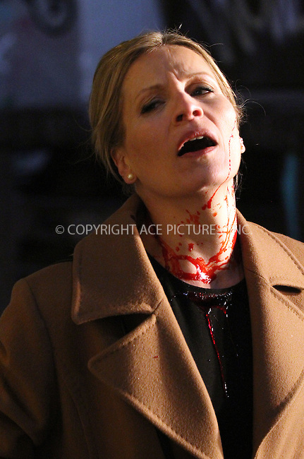 WWW.ACEPIXS.COM<br /> <br /> March 20 2014, New York City<br /> <br /> Brette Taylor on the set of the TV show 'Gotham' on March 20 2014 in New York City<br /> <br /> By Line: Zelig Shaul/ACE Pictures<br /> <br /> <br /> ACE Pictures, Inc.<br /> tel: 646 769 0430<br /> Email: info@acepixs.com<br /> www.acepixs.com