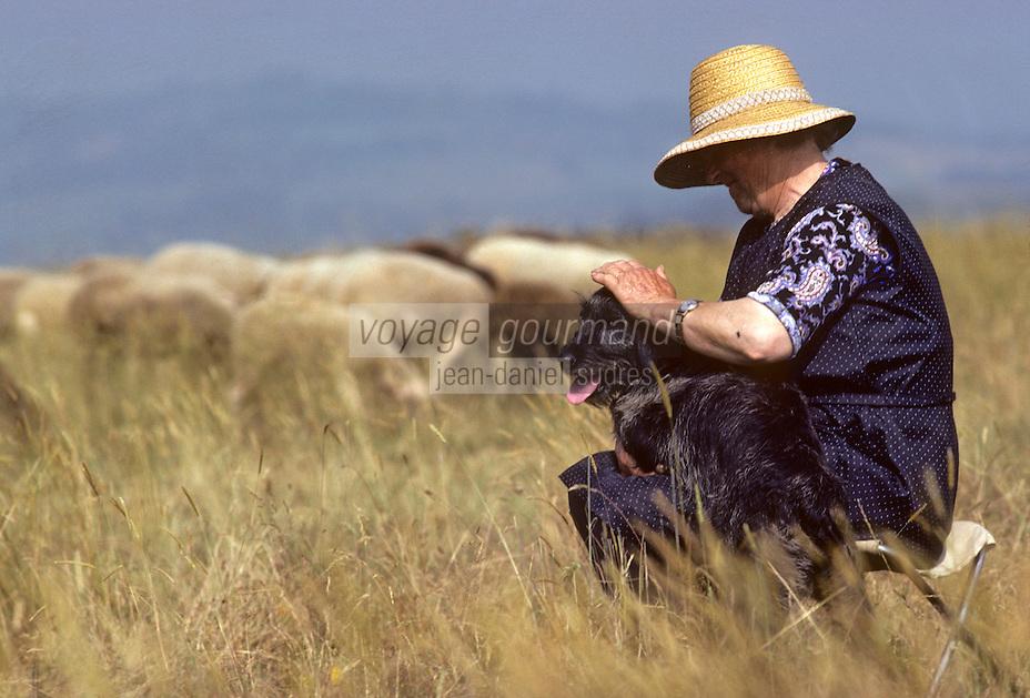 Europe/France/Auvergne/15/Cantal/env de Massiac: Bergère avec son chien et ses brebis [<br /> PHOTO D'ARCHIVES // ARCHIVAL IMAGES<br /> FRANCE 1980