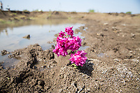 Lake Kava, the largest body of water close to the city of Latur, Maharashtra, has dried up completely.