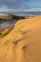 Ahnewetut Creek flows through the Great Kobuk Sand Dunes in the Kobuk Valley National Park, Arctic, Alaska.