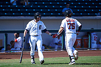 Mesa Solar Sox designated hitter Kody Eaves (28), of the Detroit Tigers organization, congratulates Taylor Gushue (75) after a home run during an Arizona Fall League game against the Peoria Javelinas on October 25, 2017 at Sloan Park in Mesa, Arizona. The Solar Sox defeated the Javelinas 6-3. (Zachary Lucy/Four Seam Images)