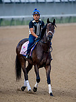 LOUISVILLE, KY - MAY 02: Kelly's Humor walks onto the track for morning workouts in preparation for the Kentucky Oaks at Churchill Downs on May 2, 2018 in Louisville, Kentucky. (Photo by John Vorhees/Eclipse Sportswire/Getty Images)