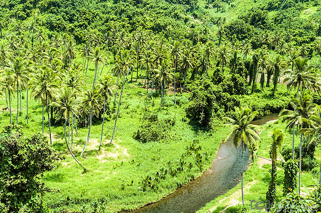 Tropical valley in Taveuni, Fiji Islands