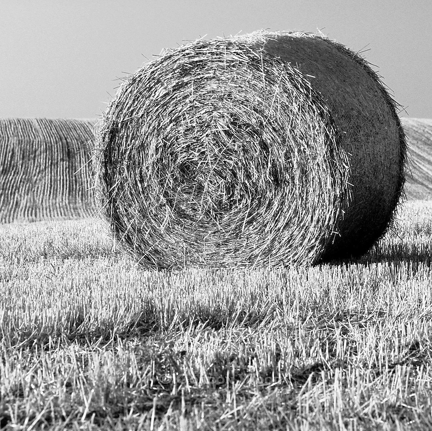 Hay Bale in Rolling Field Against Blue Sky