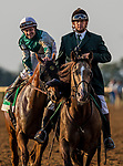 October 07 2018 : Joe Bravo after the Juddmonte Spinster States at Keeneland Racecourse on October 07, 2018 in Lexington, Kentucky. Evers/ESW/CSM