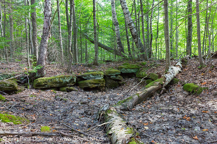 Remnants of an abandoned homestead along Tunnel Brook in Benton, New Hampshire. This area was once known as Coventry, and based on an 1860 historical map of Grafton County this is believed to have been the Jonathan Hunkings homestead. This is also the site of the old Parker House, a small hotel that operated from 1904 to about 1930.