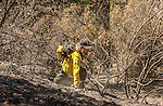 September 13, 2004 Buck Meadows --Tuolumne Fire –- Unidentified Forest Service Criminal Investigator works in area near Lumsden Bridge on the Tuolumne River, Stanislaus National Forest. The Tuolumne Fire was a small very fast-moving fire that started around noon on September 12, 2004 near Lumsden Bridge at the bottom of the Tuolumne River.  The fire moved rapidly up the 80-plus-degree slope catching Cal Fire Helitack firefighters, tragically killing firefighter Eva Marie Schicke and injuring five others.