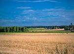 Okolice Goniądza, Polska<br /> Near Goniądz, Poland