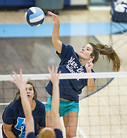 NWA Democrat-Gazette/BEN GOFF @NWABENGOFF<br /> Jayci Carpenter, Springdale Har-Ber senior, hits Thursday, Aug. 9, 2018, during volleyball practice at Wildcat Arena in Springdale.