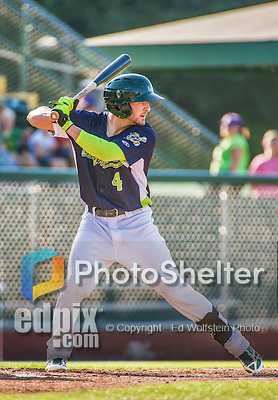 1 September 2014: Vermont Lake Monsters outfielder J.P. Sportman at bat against the Tri-City ValleyCats at Centennial Field in Burlington, Vermont. The ValleyCats defeated the Lake Monsters 3-2 in NY Penn League action. Mandatory Credit: Ed Wolfstein Photo *** RAW Image File Available ****