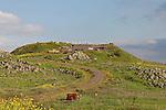 The Golan Heights. Tel Saki, site of a fierce battle in the Yom Kippur war