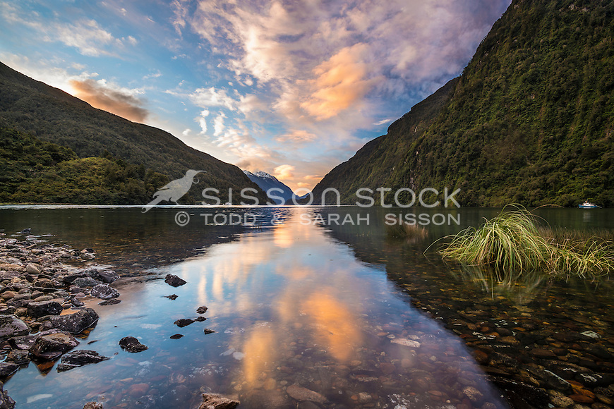 Soft pink clouds in the evening are reflected in calm waters at Doubtful Sound, Fiordland National Park, Southland, New Zealand