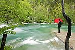parc national des lacs de Plitvice..Seize lacs aux incroyables eaux cobalt sont reliés en gradins par une multitude de cascades et de chutes tumultueuses. Le tout serti dans un écrin dhêtres, de charmes, de sapins blancs et dépicéas. Cette merveille de la nature classée au patrimoine mondial de lUnesco depuis 1979 est due à la sédimentation du carbonate de calcium présent en grande quantité dans leau. .. Plitvice Lakes national park is the largest of Croatia's eight national parks and is invluded in the Unesco list since 1979. 16 lakes and hundred of cascades are hidden in a splendid forest. This nature gem has been created by a phenomenon of karst hydrography
