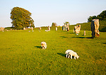 Neolithic stone circle and henge at Avebury, Wiltshire, England