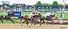 Social Butterfly winning at Delaware Park on 9/30/15