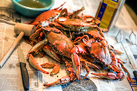 Crabs from the Chesapeake Bay