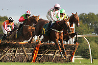 Reve De Nuit ridden by Conor O'Farrell (11) in jumping action during the Kettle Chips Handicap Hurdle