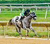 Virginia Dream winning at Delaware Park on 7/28/12