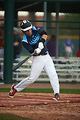Andres Garcia (1) of Union County Vo-Tech High School in Rahway, New Jersey during the Under Armour All-American Pre-Season Tournament presented by Baseball Factory on January 14, 2017 at Sloan Park in Mesa, Arizona.  (Art Foxall/Mike Janes Photography)