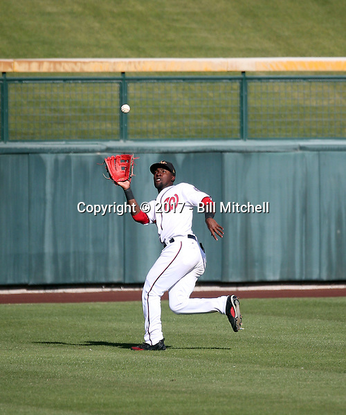 Daniel Johnson - Mesa Solar Sox - 2017 Arizona Fall League (Bill Mitchell)
