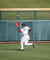Daniel Johnson - Mesa Solar Sox - 2017 Arizona Fall League (Bill Mitchell)