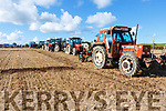 A line of tractors and ploughs ready for competition at the Abbeydorney Ploughing on Sunday.