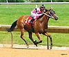 Warrioroftheroses winning at Delaware Park on 6/23/16