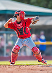 4 September 2016: Lowell Spinners catcher Nick Sciortino in action against the Vermont Lake Monsters at Centennial Field in Burlington, Vermont. The Spinners defeated the Lake Monsters 8-3 in NY Penn League action. Mandatory Credit: Ed Wolfstein Photo *** RAW (NEF) Image File Available ***