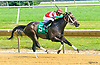 Theresa's Honor winning at Delaware Park on 7/20/17