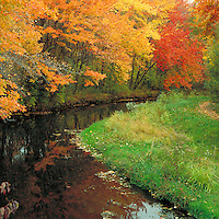 Scenic autumn landscape of a stream and fall foliage in the Massappequa Preserve. New York.