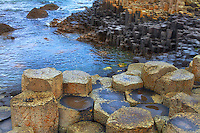 Looking at the rare basalt columns formed at the edge of the sea at the Giants Causeway in Northern Ireland.