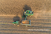 63801-12902 Harvesting corn and unloading into grain cart in fall-aerial  Marion Co. IL