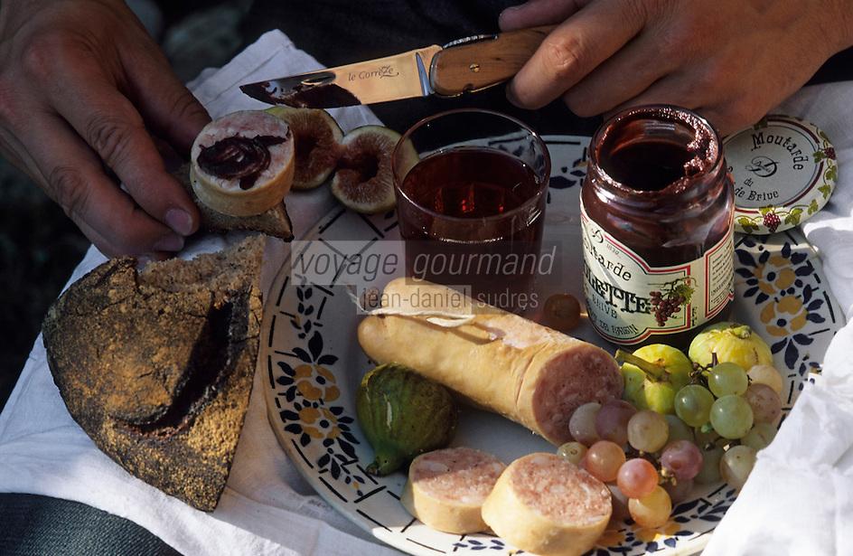 Europe/France/Limousin/19/Corrèze/Meyssac: Casse-croûte paysan: saucisson à l'ail et moutarde violette de Brive