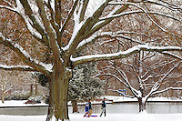 Freedom Park after a January snowstorm in Charlotte, North Carolina.