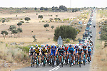 The peloton in action during Stage 10 of the La Vuelta 2018, running 177km from Salamanca to Fermoselle. Bermillo de Sayago, Spain. 4th September 2018.<br /> Picture: Unipublic/Photogomezsport | Cyclefile<br /> <br /> <br /> All photos usage must carry mandatory copyright credit (&copy; Cyclefile | Unipublic/Photogomezsport)