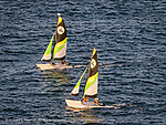 Catamarans racing along the Havana malecon
