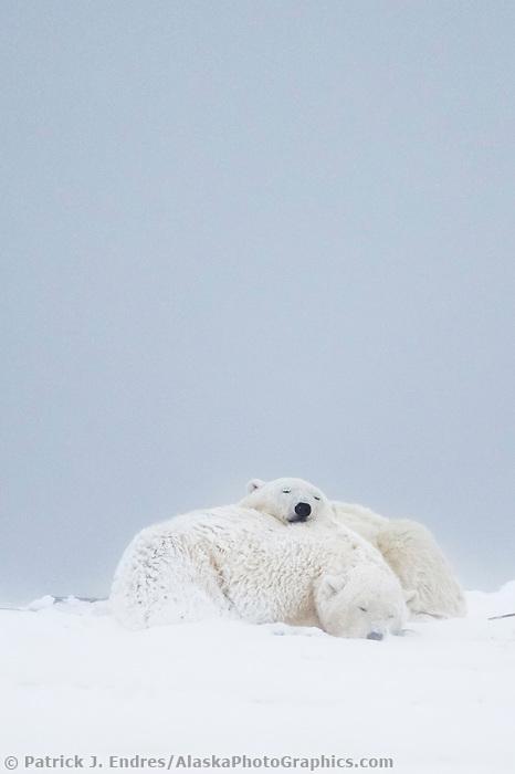 Barrier island in the Beaufort Sea, Arctic National Wildlife Refuge, Alaska.