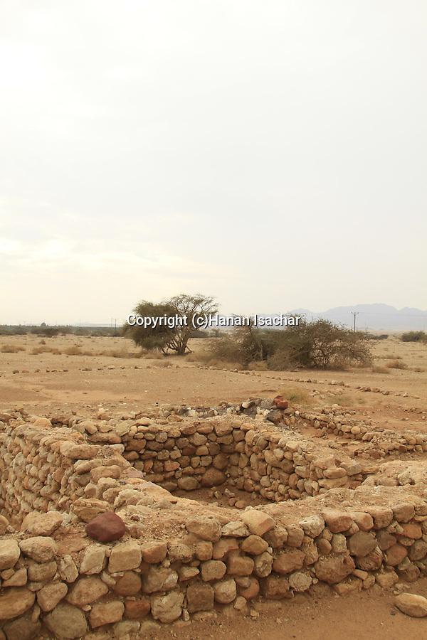 Israel, Evrona farm in the Arava