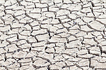 Drought in the Western States, Cracked mud, Water shortage, dry reservoir, Washington State, Pacific Northwest,
