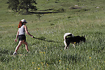Red haired Caucasian women walking her husky dog in the foothills west of Denver, Colorado, USA .  John leads private photo tours in Boulder and throughout Colorado. Year-round. .  John offers private photo tours in Denver, Boulder and throughout Colorado. Year-round.