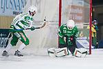 Foto: Kenta Jönsson