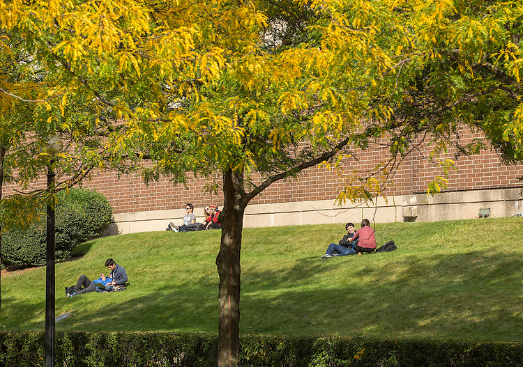 Students take in the sun under the fall foliage as it begins to appear on DePaul University's Lincoln Park Campus the week of Oct. 1, 2014.  (DePaul University/Jamie Moncrief)