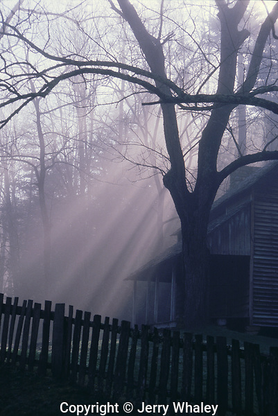 Tipton Cabin, Morning Light, Great Smoky Mountains National Park, TN